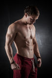 Fitness male model Royalty Free Stock Photography