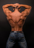Fitness male torso. Muscled male torso in studio Stock Photos