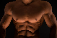 Fitness male torso Royalty Free Stock Photography