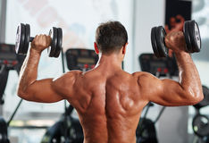 Fitness man doing shoulder and triceps workout Stock Photography
