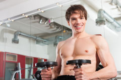 Fitness - man exercising with barbell in gym Stock Image