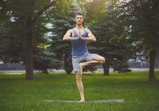 Young man training yoga in tree pose outdoors. Fitness, man training yoga in tree pose outdoors. Young sporty guy makes relaxing exercise in park, copy space Royalty Free Stock Photography