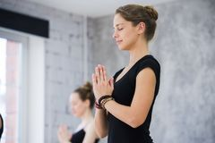 Fitness, meditation and healthy lifestyle concept - group of people doing yoga in tree pose at studio stock photography