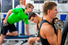 Fitness men friends in gym workout weights with equipment. Royalty Free Stock Images