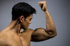 Fitness Model Flexing Bicep Muscle. A fitness model flexes his bicep looking towards the muscle. Medium close up Stock Image