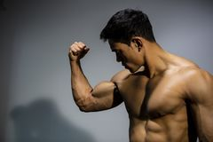 Fitness Model Flexing Bicep Muscle. A fitness model flexes his bicep looking towards the muscle. Medium close up Royalty Free Stock Photography