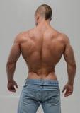 Fitness model. Fitness male model in studio stock photos