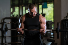 Fitness Muscle Man Exercise Biceps With Barbell Stock Image