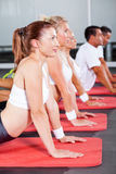 Fitness people stretching Stock Images