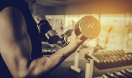 Fitness - powerful muscular man lifting weights Royalty Free Stock Photos