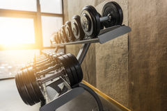 Fitness room in the morning Royalty Free Stock Photo