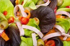 Fitness salad Royalty Free Stock Photography