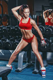 Fitness sexy athletics woman in red clothing sitting on dumbbell row in gym Stock Image