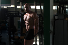 Fitness Shaped Muscle Man Posing In Dark Gym Stock Photos