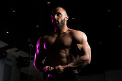 Fitness Shaped Muscle Man Posing In Dark Gym Royalty Free Stock Images