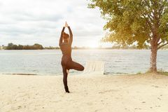 Fitness, sport, people and lifestyle concept - young woman making yoga exercises on beach from back stock photography