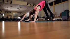 Fitness, sports, training, gym and lifestyle concept - women exercising on gym mats.  stock video