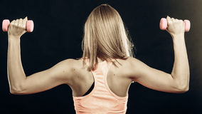Fitness sporty girl lifting weights back view Royalty Free Stock Photography