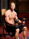 Fitness strength. Royalty Free Stock Image