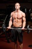 Fitness strength. Royalty Free Stock Photo