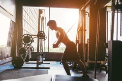 Fitness Strong Man Doing Heavy Weight Exercise on Machine in gym.  stock image
