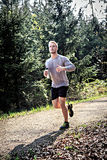 Fitness trail Royalty Free Stock Photos