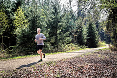 Fitness trail Royalty Free Stock Images