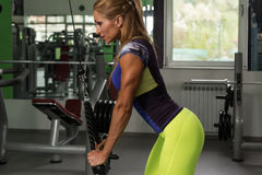 Fitness Woman Doing Exercise For Triceps On Machine Stock Photos