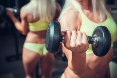 Fitness woman doing exercises with dumbbell Royalty Free Stock Photo