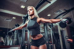 Fitness woman doing exercises with dumbbell in the gym. Royalty Free Stock Image