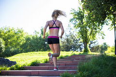 Fitness woman doing exercises during outdoor cross training workout in sunny morning Stock Photography