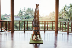 Fitness woman doing Sirsasana yoga Royalty Free Stock Photo