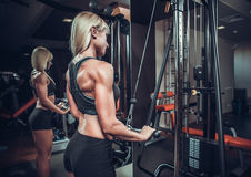 Fitness woman doing triceps exercises Royalty Free Stock Photography