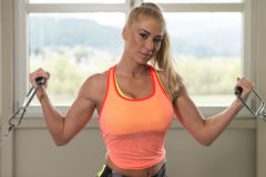 Fitness Woman Exercising Biceps On Machine Stock Photos
