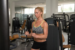 Fitness Woman Exercising Biceps On Machine Stock Photography
