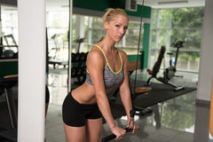 Fitness Woman Exercising Triceps On Machine Royalty Free Stock Images