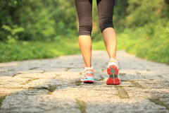 Fitness woman legs hiking on trail Stock Image