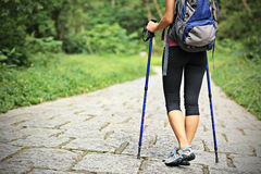Fitness woman legs hiking on trail Royalty Free Stock Image