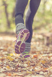 Fitness woman legs running at forest. Concept sport healthy lifestyle Stock Images