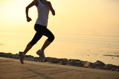Fitness woman legs running at forest trail Royalty Free Stock Image