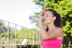 Fitness Woman Refreshing Stock Photos