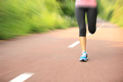 Fitness woman runner running on trail Royalty Free Stock Images