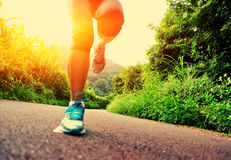 Fitness woman runner running on trail Royalty Free Stock Photos