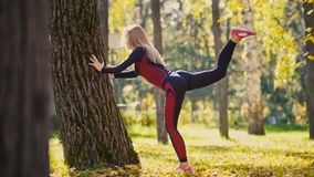 Fitness woman strength training doing workout at sunny autumn park. Fit caucasian sporty girl exercising her body near tree - lift stock photo