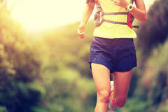 Fitness woman trail runner running on trail Royalty Free Stock Photos