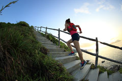 Fitness woman trail runner on seaside mountain stairs Stock Image