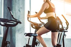 Fitness woman in training showing exercises with exercise-machine in gym, fitness concept, sport concept. Young sporty woman stock image