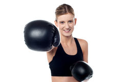 Fitness woman wearing boxing gloves Royalty Free Stock Images