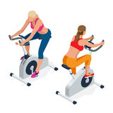 Fitness woman working out on exercise bike at the gym. Isolated on white background. Doing sport biking in the gym. For fitness. Flat 3d isometric vector Stock Photos