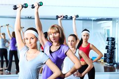 Fitness women. Group of young women in the gym centre Stock Images